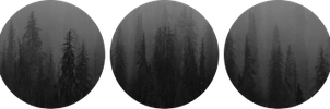 Dark forest deco divider by Martith