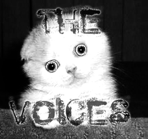 thevoiceskitten by fortytwo2a