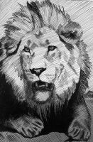 Wild Life-Lion by mariapalitos68