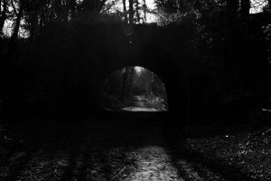 Bridge 4 by The-Almighty-Swampy