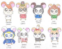 Hamtaro in World Cup 2010 III by macaustar