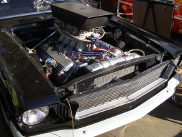 Ford 427 SOHC Powered Mustang by Jetster1