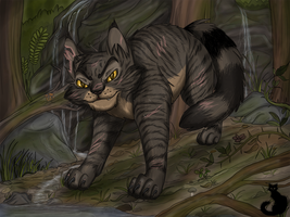 Tigerstar by Blaukralle