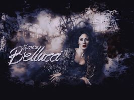 Monica Bellucci Wallpaper by Seia5018