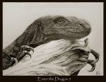 Enter the Dragon 5 by Ellygator