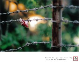 Analogue : Thorns by gizmo17