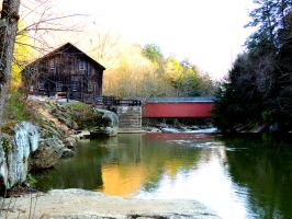 McConnells Mill - Spring by dmguthery