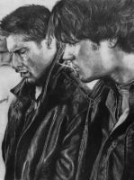 Winchesters by staseykinney