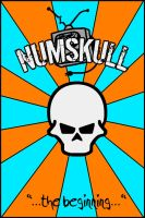 Numskull Cover by alkaline