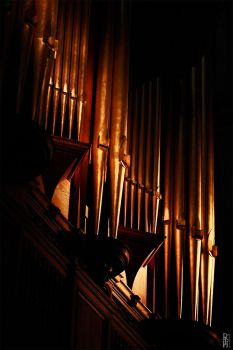 Cathedral Organ Pipes by nouvellecreation