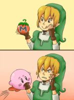 SSBB: Link and Tomato by M-U-S-I-K