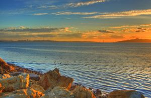 Ducks of the Bay by kory83