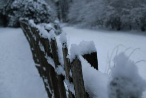 Snow on fence by UltrasonicLucy