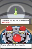 Pokemon ClearCrystal Starters Chicerita by Steamland