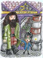 Come On Hagrid, lets buy more wizard-stuff! by FeanorFeuergeist