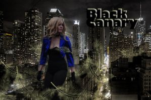Black Canary: Gotham Guardian by FlansPirateWench