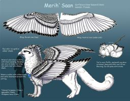 MerihSaan Character Reference by silvermoonnw