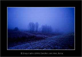 Cold Winter by sandervandenberg