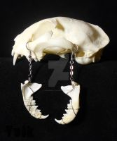 Carnivore Earrings by Shamans-Yoik