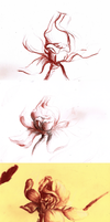 Shades Of Flower2 by Drrrakonis