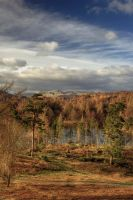 Tarn Hows and  Langdale Pikes by pjones747