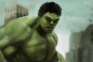 Avengers Hulk by lberry1976