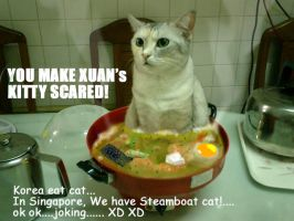 Singapore eat cat.... by NCH85