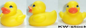 Rubber Duck by KW-stock