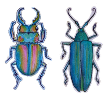 beetle stickers by flowwwer