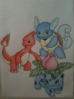 Pokemon- Ivysaur, Charmeleon and Wartortle by sazmullium