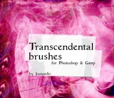 Transcendental Brushes by kanonliv
