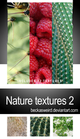 Nature Texture Pack 2 by beckasweird