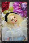 Alice Collection 2013 105 (2) by SutherlandArt