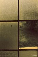 the window by mihmann