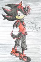 Shadow the Hedgehog gift by yosoykapa