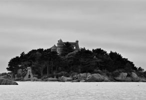THE MYSTERIOUS CASTLE OF THE FORGOTTEN ISLAND by lombregrise