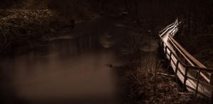 Riverside in night time by Mohicant