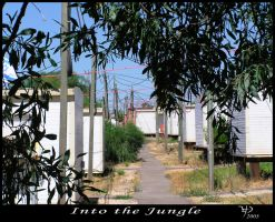 Into the Jungle by Kutaly