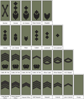 M07 work rank insignia Army by Tounushi