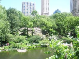 Central Park pond by SumYungGa1