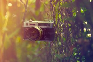 camera vigs 1 by ernest-art