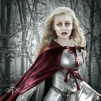 Run!, my Lady by vampirekingdom