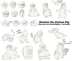 Domino character sheet by GuineaPigDan