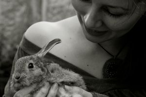 the rabbit has got the look by hepikied