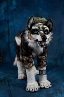Wolf-Link Quad suit - Ayacon09 by Inu-Sama