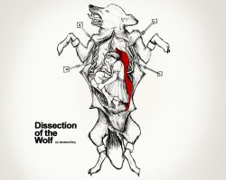 Dissection of the Wolf by daveauchery