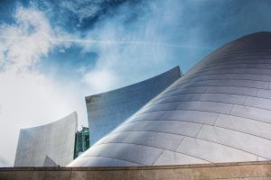Disney Concert Hall in L.A. by shayne-gray