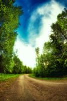 I don't follow roads by Flaeger