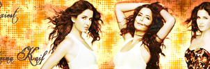 Banner 1 BB by scarletartista