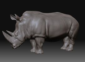 old rhino by mrajeev1